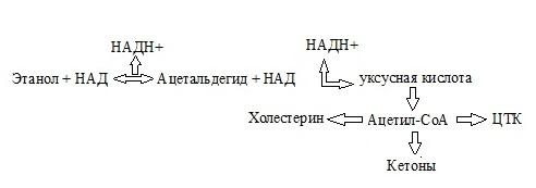 Биохимия у циррозников форум
