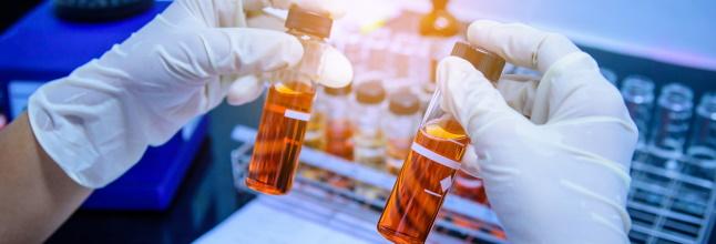 Основные методы научного исследования
