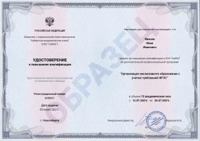 Организация инклюзивного образования с учетом требований ФГОС